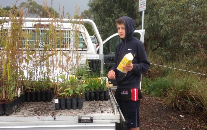 Tree planting in Warrnambool