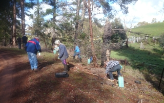 Flowerdale Landcare in action.