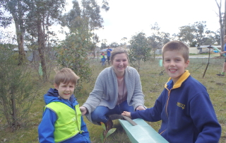Planting at Bendigo