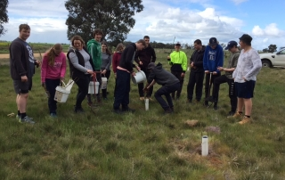 Donald secondary students planting trees as part of their curriculum.